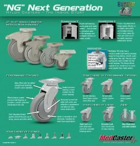 thumbnail of ng_flyer